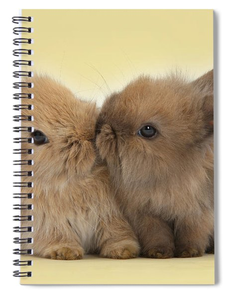 Bunny Kisses Spiral Notebook