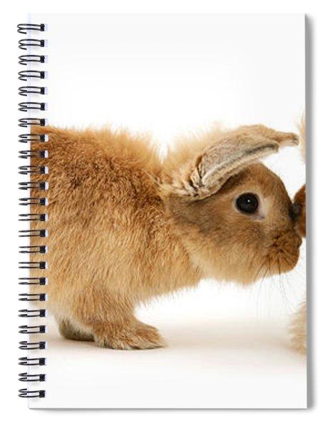 Bunny Nose Best Spiral Notebook