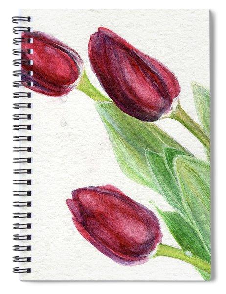 Burgundy Tulips Spiral Notebook