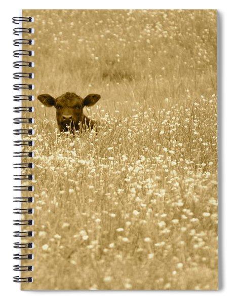Buttercup In Sepia Spiral Notebook