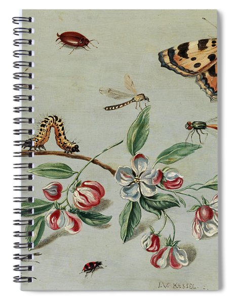Butterflies, Beetles, Caterpillar And Flowers Spiral Notebook