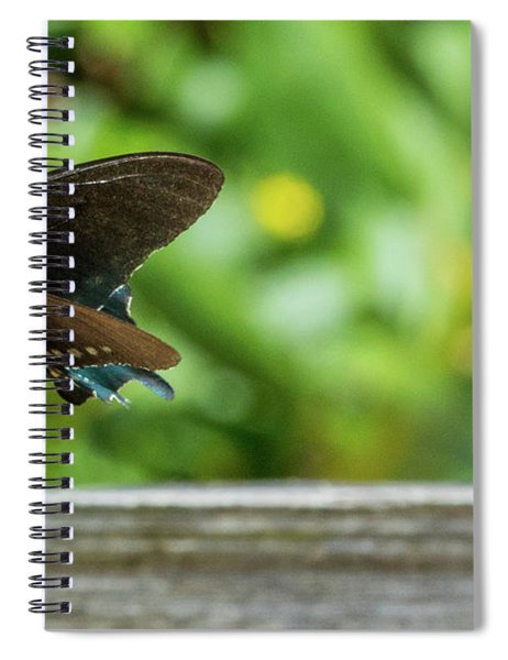 Butterfly And Bee Spiral Notebook