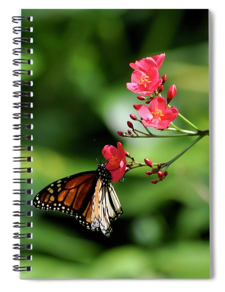 Butterfly And Blossom Spiral Notebook