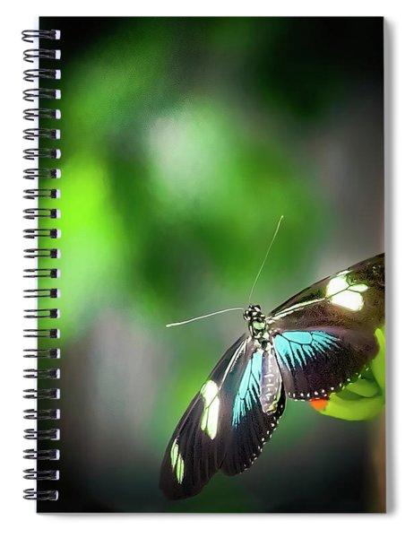 Butterfly At Cleveland Botanical Gardens Spiral Notebook
