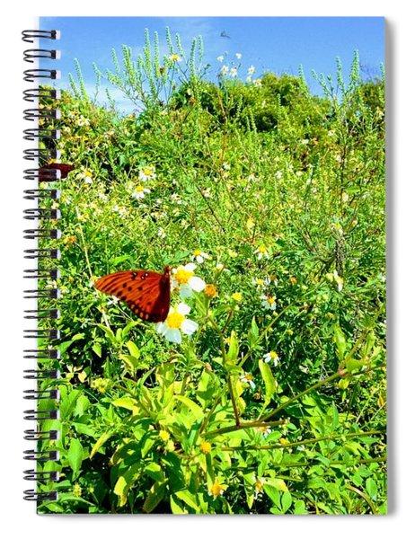 Butterfly Bonanza Spiral Notebook