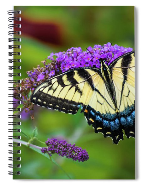 Butterfly Color Spiral Notebook