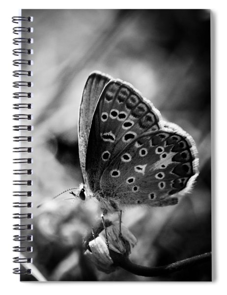 Butterfly In Black And White Spiral Notebook by Mirko Chessari