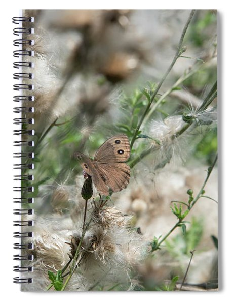 Butterfly In Puffy Seed Heads Spiral Notebook