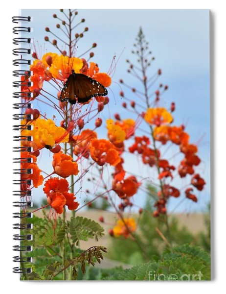 Butterfly On Bird Of Paradise Spiral Notebook