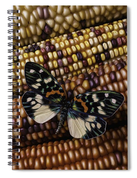 Butterfly On Indian Corn Spiral Notebook