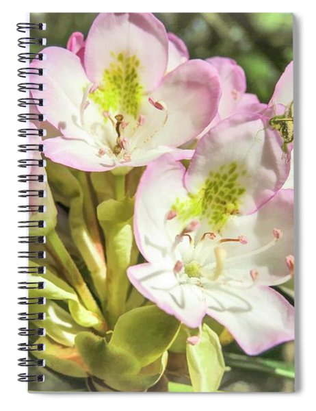 Butterfly On Wild Rhododendron Flower. Spiral Notebook