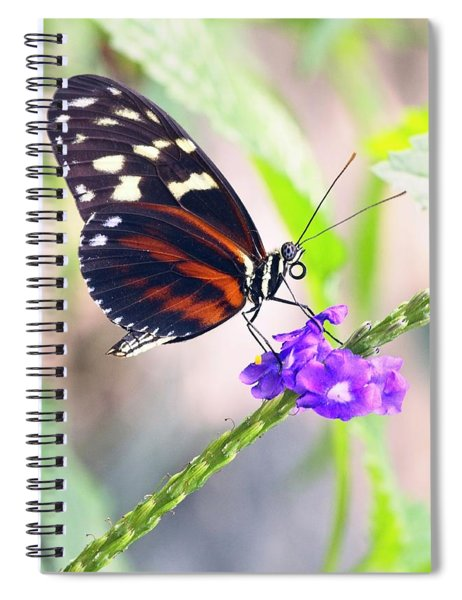 Butterfly Side Profile Spiral Notebook by Garvin Hunter