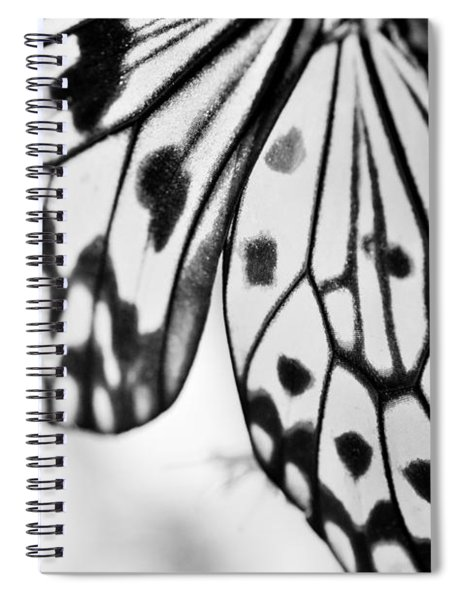 Butterfly Wings 3 - Black And White Spiral Notebook