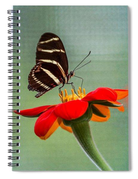 Butterfly Zebra Longwing On Zinnia Spiral Notebook