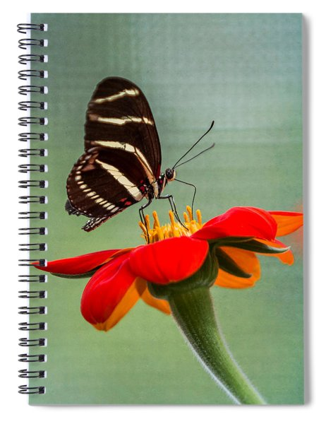 Spiral Notebook featuring the photograph Butterfly Zebra Longwing On Zinnia by Patti Deters