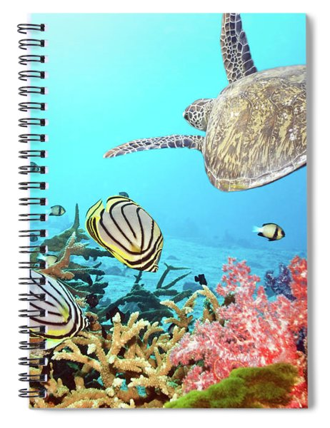 Butterflyfishes And Turtle Spiral Notebook
