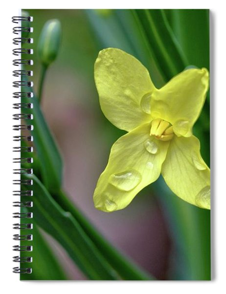 Cabbage Blossom Spiral Notebook