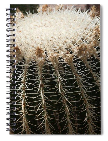 Cacti Fine Art Spiral Notebook