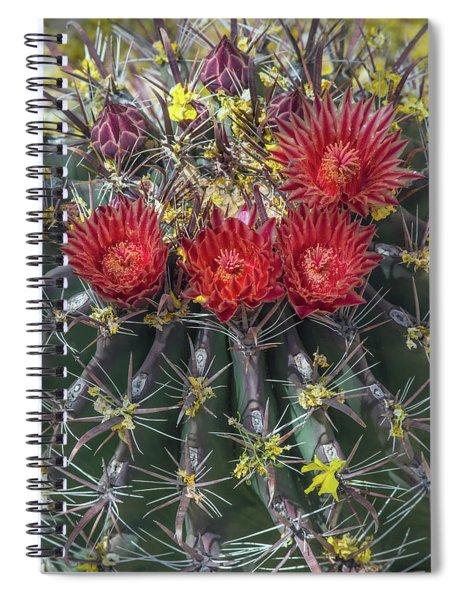 Cactus Blooms 6496-041818 Spiral Notebook