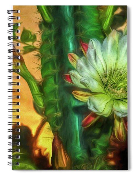 Cactus Flower At Sunrise Spiral Notebook