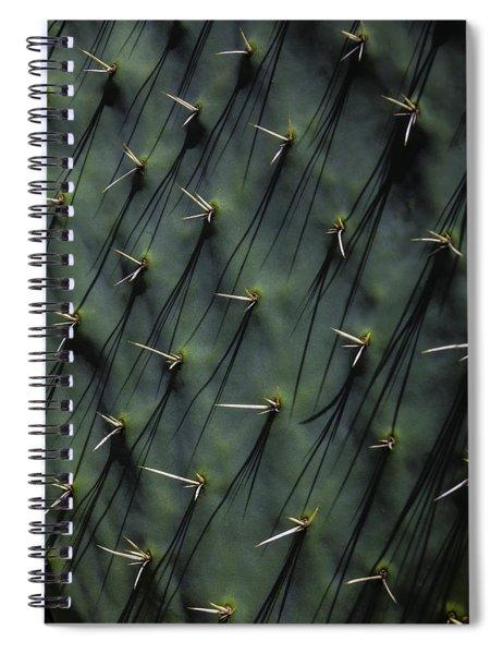 Cactus Thorn Shadows Spiral Notebook