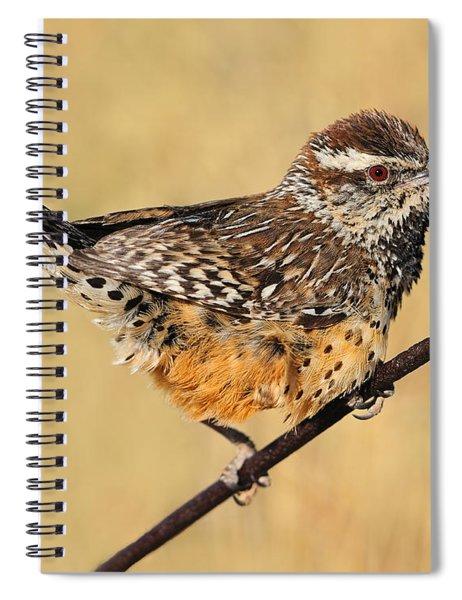 Cactus Wren Spiral Notebook