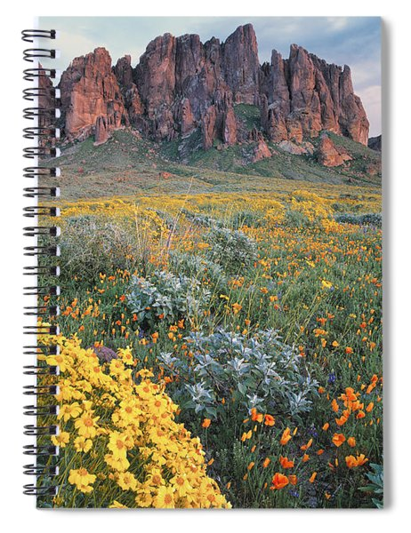 California Brittlebush Lost Dutchman Spiral Notebook