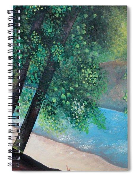 California Magic Spiral Notebook