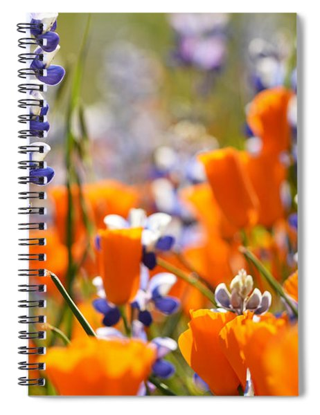 California Poppies And Lupine Spiral Notebook