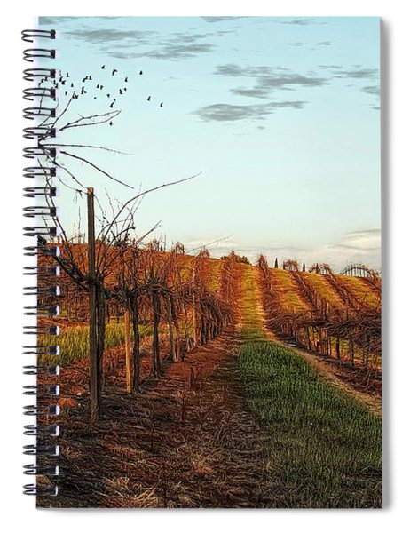California Vineyard In Winter Spiral Notebook