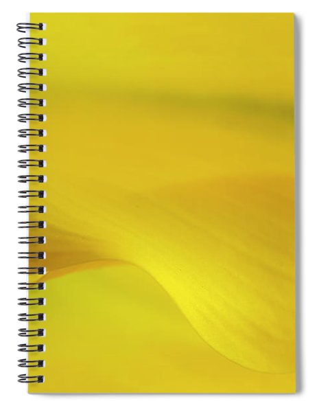 Calla Lily Curves Spiral Notebook
