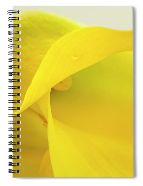 Calla Lily In Yellow Spiral Notebook