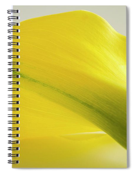 Calla Lily Reflection Spiral Notebook