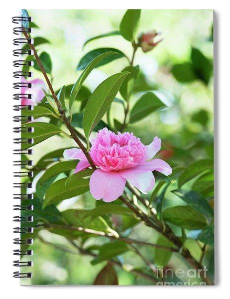 Camellia Ballet Queen Spiral Notebook