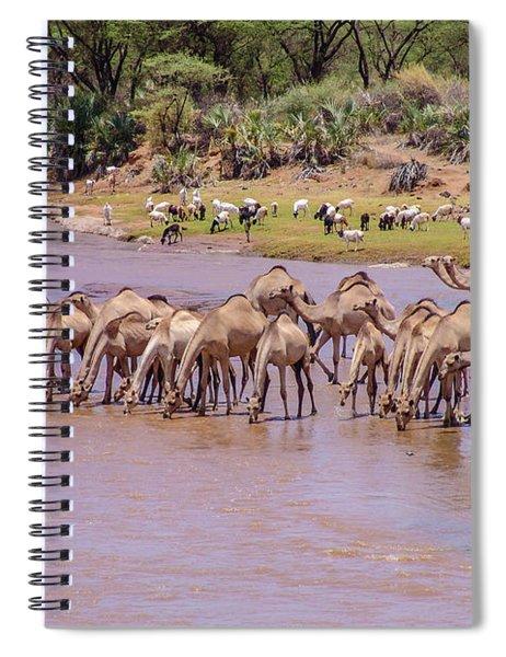 Camels At Ewaso Ng'iro River Spiral Notebook