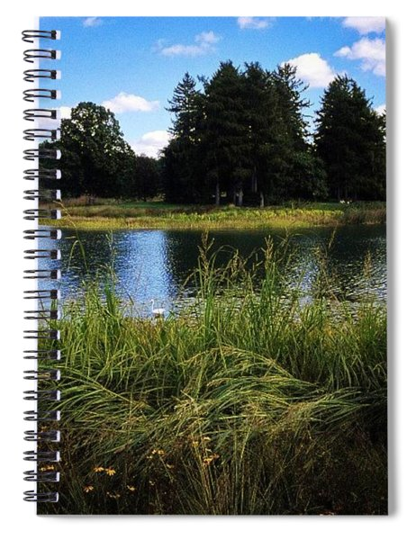 Can You Spot The Egret Spiral Notebook