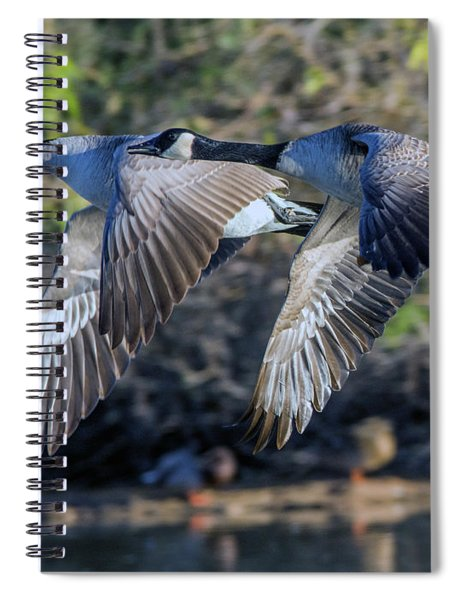 Canada Geese 1733-011917-1cr Spiral Notebook