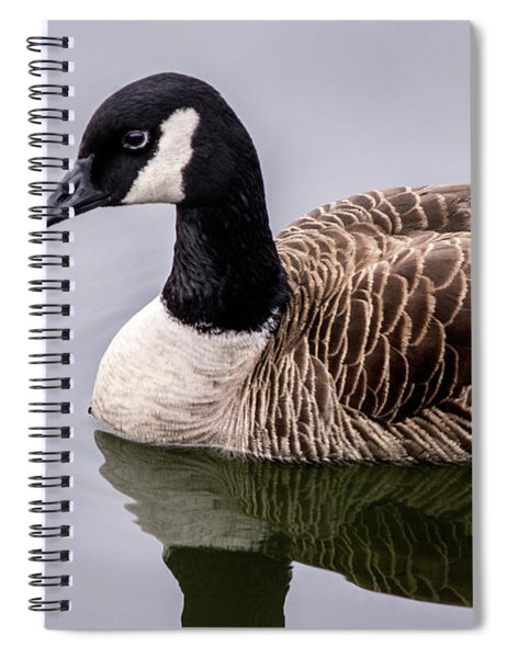 Canadian Goose At Rio Spiral Notebook