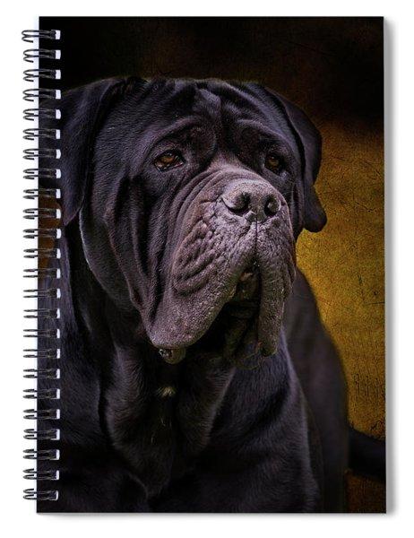 Cane Corso Spiral Notebook