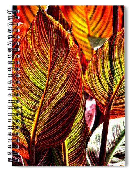 Spiral Notebook featuring the photograph Canna 26106hdr by Brian Gryphon