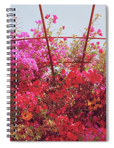Canopy Of Color- Photography By Linda Woods Spiral Notebook