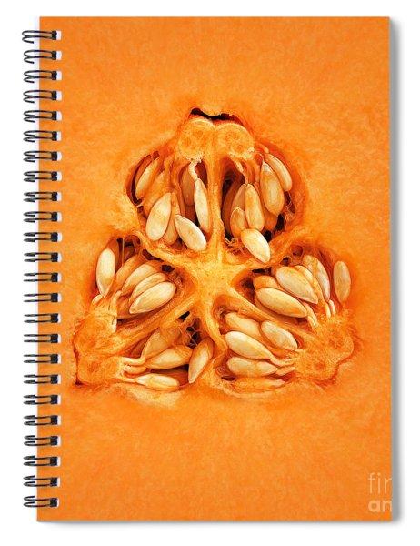 Cantaloupe Melon Inside Spiral Notebook by Johan Swanepoel