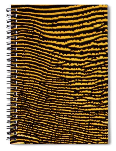 Interlaced Lines Spiral Notebook