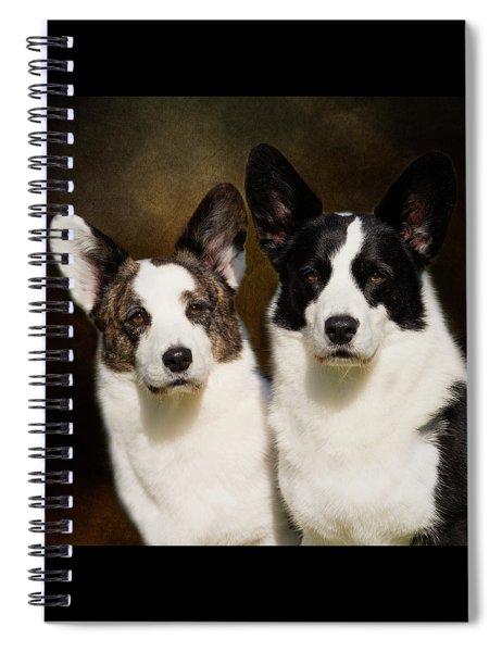 Cardigan Corgis Spiral Notebook