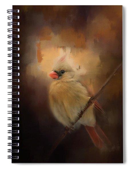 Cardinal In The Evening Light Bird Art Spiral Notebook