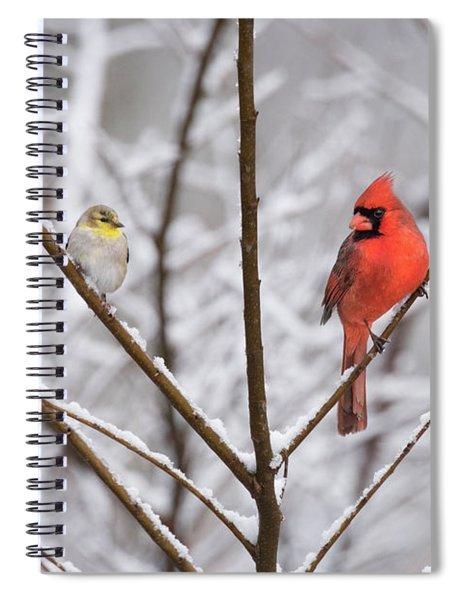 Goldfinch And Cardinal Spiral Notebook