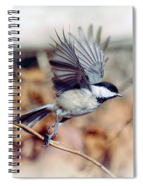 Carolina Chickadee - Come Fly With Me  Spiral Notebook