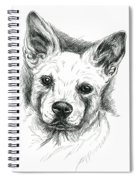 Carolina Dog Charcoal Portrait Spiral Notebook