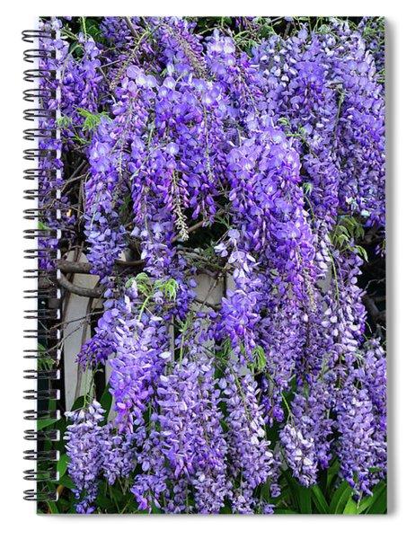 Cascading Wisteria 2 Spiral Notebook