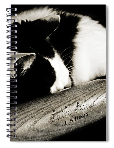 Cat And Bat Spiral Notebook